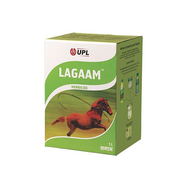 Lagaam