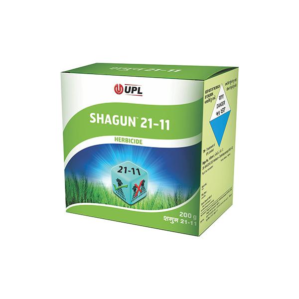 Shagun 21-11